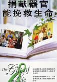 Derma Organ (B. Cina)