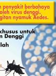 Denggi:Slaid TV Denggi 04