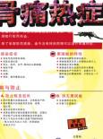 Denggi :Fakta Denggi (B. Cina)