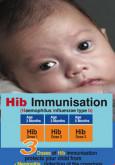 Imunisasi Hib (BI)