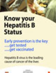 Hepatitis B (BI)