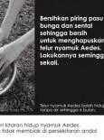 Denggi: Piring Pasu Bunga (BM)