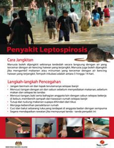 Leptospirosis 02