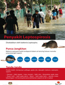 Leptospirosis 01