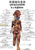 Merokok:Tubuh Seorang Perokok (B.Cina)