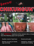 Chikungunya (B. Inggeris)