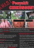 Chikungunya (B. Malaysia)