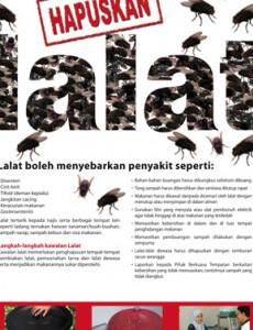 Hapuskan Lalat