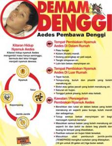 Denggi:Fakta Denggi (Bahasa Malaysia)
