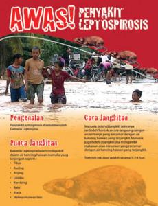Leptospirosis:AWAS! Penyakit Leptospirosis