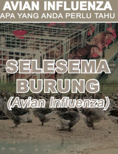 Avian Influenza : Apa yang anda perlu Tahu (BM)