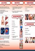 Hepatitis C (Muka Belakang)