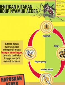 Denggi : Cegah Denggi (B.Malaysia)