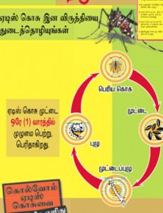 Denggi : Cegah Denggi (B.Tamil)