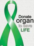 Dermalah Organ Demi Sebuah Kehidupan (B.Inggeris)