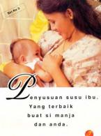 Penyusuan Susu Ibu (BM)