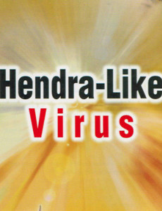 SARS : Hendra-Like Virus