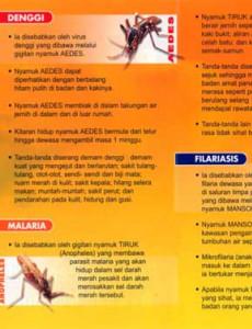 Denggi :Fakta Penting Penyakit Bawaan Nyamuk
