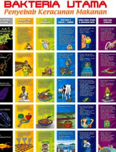 Keracunan makanan: Bakteria Utama