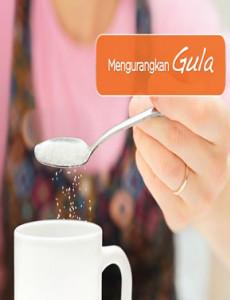 Mengurangkan Gula - Flipchart