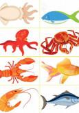 IMFree Tahun 1: Ikan Artcard