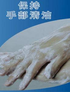 Pandemik Influenza : Pastikan tangan anda bersih (BC)