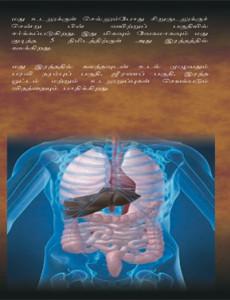 Alkohol Memudaratkan Kesihatan (Bahasa Tamil)