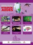 Denggi:Lindungi Diri daripada Gigitan Nyamuk Aedes