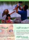 Derma Organ: Organ Donor Registration Form