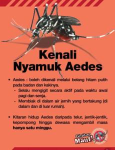 Denggi:Pameran Demam Denggi 3
