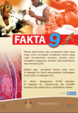 Malaria 17
