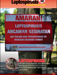 Leptospirosis 1