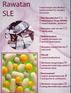 SLE 13