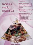SLE 16