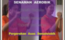 Senaman Aerobik : Pergerakan Asas Senamrobik