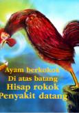 Merokok : Ayam berkokok di atas batang....